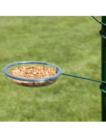 Feed dish for feeding station