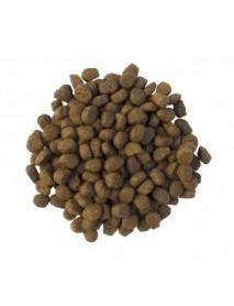 Crunchy hedgehog food