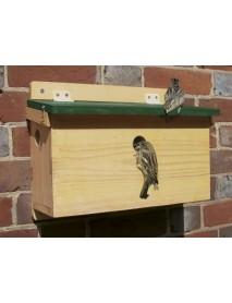 House sparrow nest box terrace