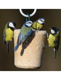 I Love my Birds - Fruit, Nut & Berries suet tubcake
