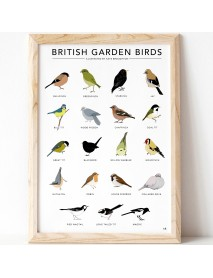 British garden birds print (unframed)