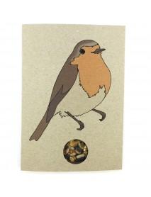 Robin seed card