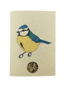 Blue Tit seed card