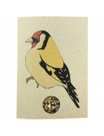 Goldfinch seed card