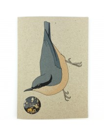 Nuthatch seed card