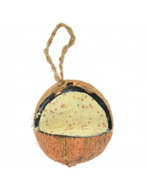 Suet filled coconuts