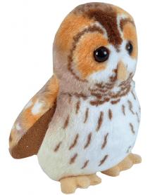 Tawny owl singing bird