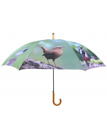 Garden bird print umbrella